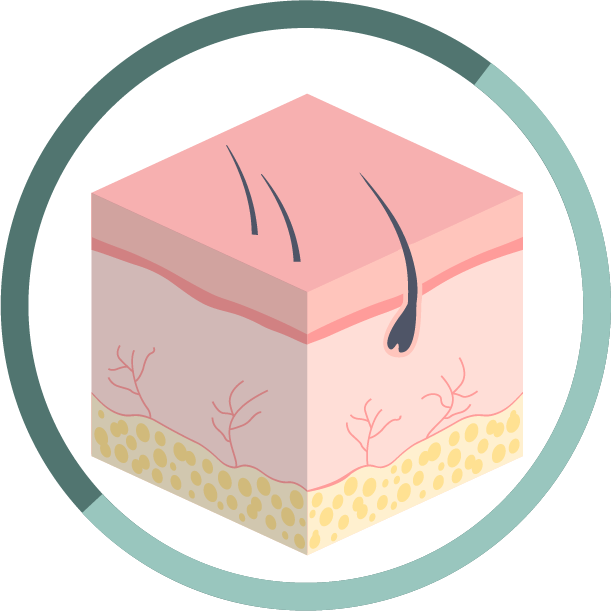 STEP 4 鎮靜皮膚